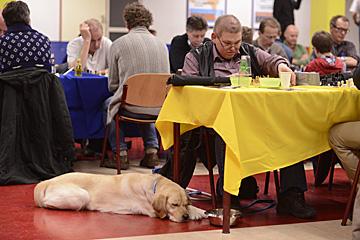 Verbonden voor honden (maar niet voor deze)